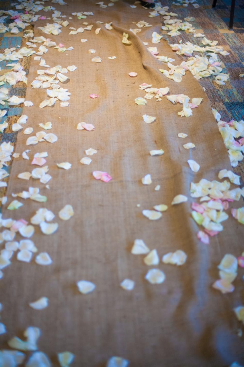 farmers_table_boca_raton_wedding_photographer-15
