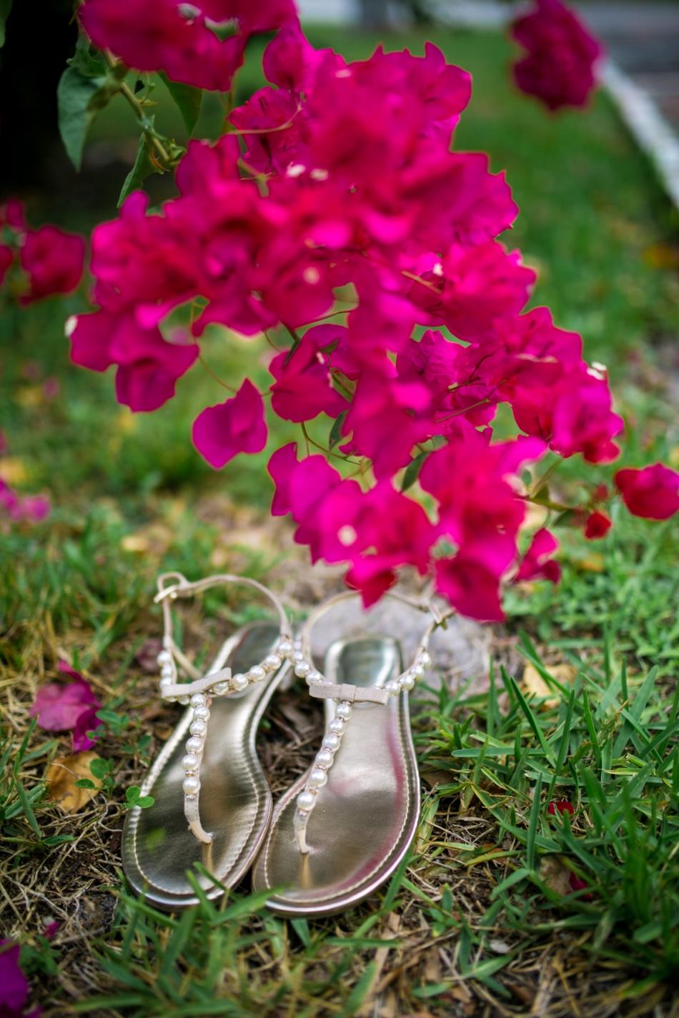 farmers_table_boca_raton_wedding_photographer-53