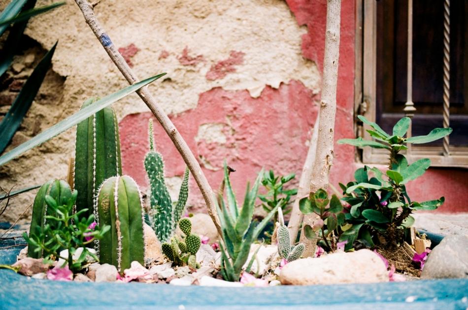 film_photos_of_guanajuato_mexico-2